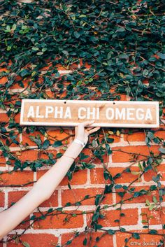 The cutest decor for your dorm room or your living room! Don't miss out on these awesome customized Alpha Chi Omega vintage signs!