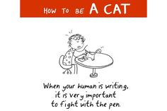 How to be a cat- reason for bad handwriting