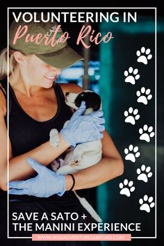 Getting Philanthropic in Puerto Rico: Volunteering At Save A Sato With The Manini Experience · Learn all about volunteering with stray dogs in Puerto Rico! The perfect way to do good while traveling!