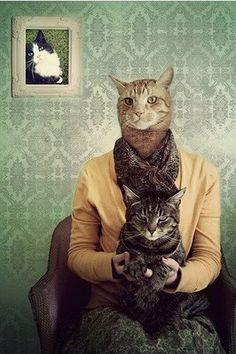 hahahaha sorry this is wayy to funnnn....cat heads EVERYWHERE