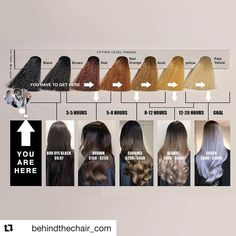 Hair Salons for Updos Hairstyles Wilmington In 2020 Jcpenney Salon Hair Color Prices Hair Salon In Black To Blonde Hair, Going Blonde, Silver Blonde, Blue Hair, Dark Hair, Hair Chart, Salon Hair Color, Color Correction Hair, Box Dye