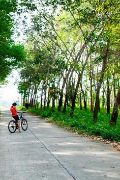 Explore the lush grounds on two wheels. The Village Coconut Island (Maprao Island, Thailand) - Jetsetter