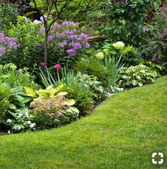 Best of perennial garden design tips for growing flower basic small . perennials for garden new Perennial Garden Plans, Garden Shrubs, Shade Garden, Perennial Plant, Perennial Gardens, Flowers Perennials, Planting Flowers, Flower Gardening, Flowering Plants