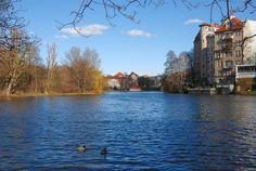 Lietzensee in Berlin Charlottenburg. Wohnung in Berlin. #Berlin #Lietzensee #Charlottenburg