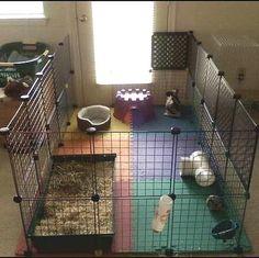 enclos-parc-lapin-cavy-cage