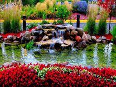 Flores hermosas. | MandarSaludos.com