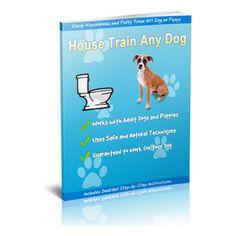 Dog Training School, Dog Training Classes, Training Your Puppy, Potty Training, Ferrets Care, Pet Rats, Pets, Chameleon Care, Pet Loss Grief