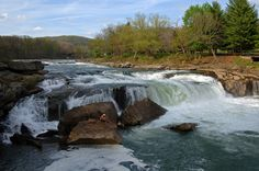 In Ohiopyle State Park the Youghiogheny River pulls a 180 and drops over 100 feet in the maneuver. The result is some of the best white water in the east. The brave (or foolhardy) plunge kayaks over the falls.