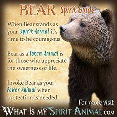 Bear Spirit Animal Totem Power Animal Symbolism Meaning 1200x1200
