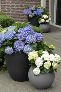easy and affordable DIY garden pots you've never thought of Architecture designSpring is here, why don't you go out and do something nice for your garden? Make unique DIY garden pots for your plants Diy Garden, Garden Planters, Garden Projects, Balcony Gardening, Front Yard Planters, Front Porch Flowers, Potted Garden, Porch Garden, Gravel Garden