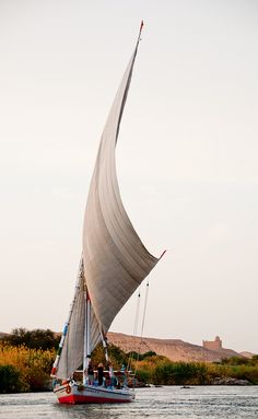 I miss sailing! :'(