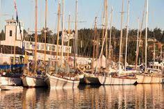 Port Townsend, Wooden Boat Festival, classic sailboats, Olympic Peninsula, Washington State, Pacific Northwest, USA,