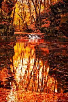 orange landscape inspiration