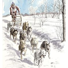 Ben Babelowsky: Sled Dog Races, Nepean, 1976 - Original Illustration Art American Illustration, Dog Illustration, Sled, Dog Art, Dog Stuff, Camel, Art Drawings, Art Ideas, Racing