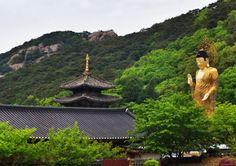 Temple stays in Korea
