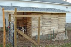 Pallet Shed : Our Little Backyard Farm : Goat shelter from broken down pallets.