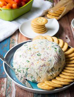 Salami Cream Cheese Ball - I Wash You Dry