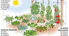 Que el espacio ya no sea excusa para no tener alimentos frescos y orgánicos en casa, de tu propia producción.