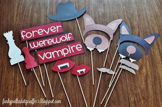 Twilight Breaking Dawn Party Photo Props