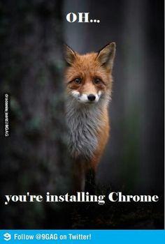 Poor firefox :(