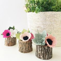 My mini felt succulent & blossom planters make for a super pretty and unique gift! And better yet, they're budget-friendly and cost under $25 shipped. ✌️