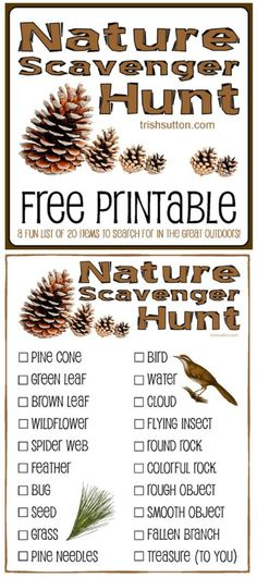 Free Printable for Kids by - , Nature Scavenger Hunt; Free Printable for Kids by - Nature Scavenger Hunt; Free Printable for Kids by - Camping Scavenger Hunts, Outdoor Scavenger Hunts, Nature Scavenger Hunts, Scavenger Hunt For Kids, Camping Hacks With Kids, Camping Activities For Kids, Group Camping, Family Camping, Camping Ideas
