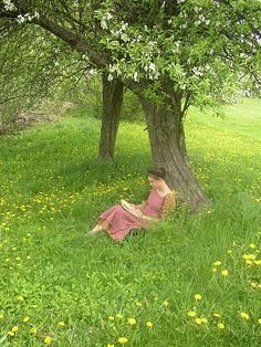 Reading outside under the apple tree