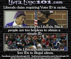 liberal-logic-101-873