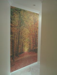 Mural inspired by nature to liven up a hallway Commercial Wallpaper, How To Install Wallpaper