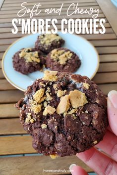 These are the best soft and chewy s'mores cookies. They are perfect for your holiday cookie exchanges or to bring to a picnic in summer. Yes, we've even made this to give to Santa for his Christmas cookie. These are soft and chewy and deeply deliciously dark chocolate-y. Delicious Cookie Recipes, Best Cookie Recipes, Yummy Cookies, Homemade Desserts, Easy Desserts, Dessert Recipes, Smores Cookies, Bar Cookies, Best Chocolate Desserts
