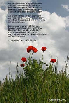 In Flanders Field....My Mother taught me this poem and I want everyone to remember World War 1 and keep the tradition of wearing a red poppy on Memorial Day in The U S A ...I GOT 5 TODAY FOR MY FAMILY