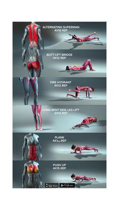 Full Body Workout Program, Body Weight Leg Workout, Full Body Gym Workout, Gym Workout Videos, Gym Workout For Beginners, Fitness Workout For Women, Butt Workout, Workout Programs, Belly Pooch Workout