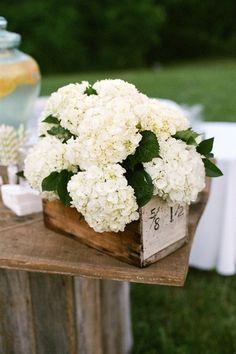 Hortensias blancs au naturel pour une décoration de mariage vintage rustique