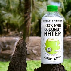 """""""Have you tried the @HarmlessHarvest Raw #Coconut Water at the Cafe? It's amazing, and so is their business. We love it. You will too!  It's 100% Raw. 100%…"""""""