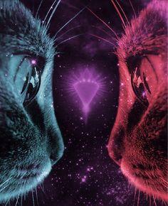 Cat eyes in space