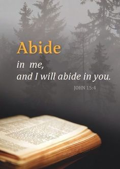 """""""Abide in me, and I in you. As the branch cannot bear fruit of itself, except it abide in the vine; no more can ye, except ye abide in me. I am the vine http://facebook.com/173301249409767, ye are the branches: He that abideth in me, and I in him, the same bringeth forth much fruit: for without me ye can do nothing"""" (John  15:4-5). http://lds.org/scriptures/nt/john/15.4-5#3 Enjoy more inspiring images, scriptures, and uplifting messages from the Holy Bible http://facebook.com/212128295484505"""