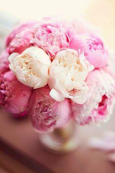 Vaaleanpunaista kevääseen