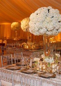 White || Wedding Photo
