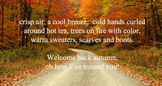 I hate to see summer end...love the beach! But there is something wonderful about autumn! Its like God paints the world with orange,red yellows! Love the crisp air! Pretty sweaters, jeans, boots & scarves!