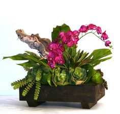Artificial Succulents & Orchids in Low Wooden Planter Artificial Succulents & Orchids in Low Wooden Artificial Succulents, Wooden Planters, Plant Decor, Orchids, Plants, Modern, Diy, Wood Planters, Trendy Tree