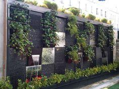 jardin min ral et v g tal plantation massifs mineral et vegetal cl ture et mur vegetal. Black Bedroom Furniture Sets. Home Design Ideas