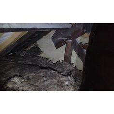 Lille. Plaque en fibro ciment amianté dans les combles perdus d'un bâtiment. #diagnosticsimmobiliers #amiante #asbestos #nord #lille