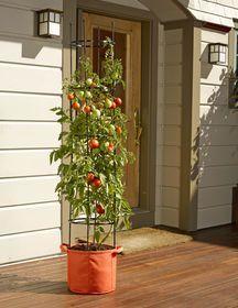 Gardener's Best® Tomato Grow Bag Set