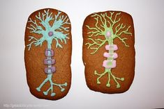 Not So Humble Pie: Science Cookie Roundup #6  Chelsea sent in these absolutely fantastic cookies representing neurons, neuromuscular junction, spine with nerves.