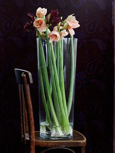 - Furniture and Home Furnishings Long stems in a tall glass vase, like BLADET, make a striking and elegant arrangement.Long stems in a tall glass vase, like BLADET, make a striking and elegant arrangement. My Flower, Fresh Flowers, Flower Power, Beautiful Flowers, Tall Flowers, Flowers Vase, Indoor Flowers, Flowers Decoration, Flower Bouquets