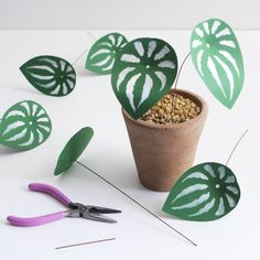 DIY paper plant: watermelon peperomia - The House That Lars Built Easy Craft Projects, Crafts For Kids, Arts And Crafts, Craft Ideas, Diy Crafts, Paper Glue, Diy Paper, Paper Craft, Paper Leaves