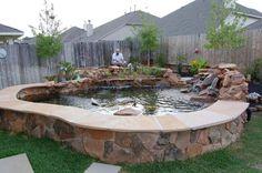 DIY BackYard Turtle Pond Designs Ideas 4