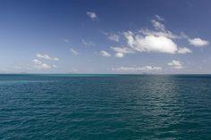 Gerald Freeman's Bookish Art Blog.: 'The Most Distant Horizon'