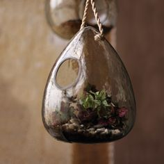 Bambeco Recycled Glass Teardrop Terrarium | Organic Spa Magazine's 2013 Gift Guide: Entertainer | #OrganicSpaMagazine