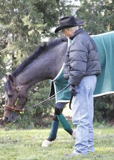 Oxbow Horse | Connections Kentucky Wildcats, Kentucky Derby, Miss You Daddy, Churchill Downs, Sport Of Kings, Racehorse, Thoroughbred, Great Memories, Horse Racing
